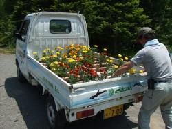 動物園内花壇整備を開催しました